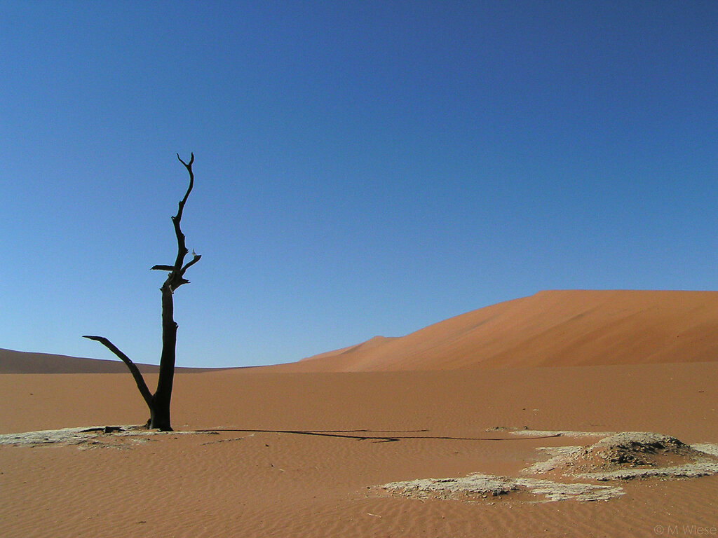 051211-marc-wiese-namibia-0534.jpg